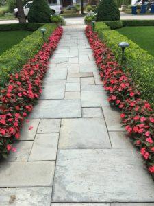 flower-path-2
