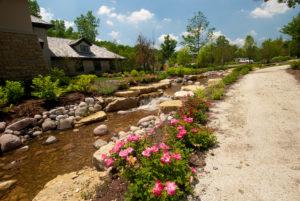 flowers-water-creek